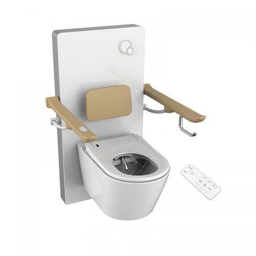 Toilet lifter